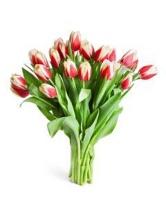 Midsummer Night Tulip Bouquet